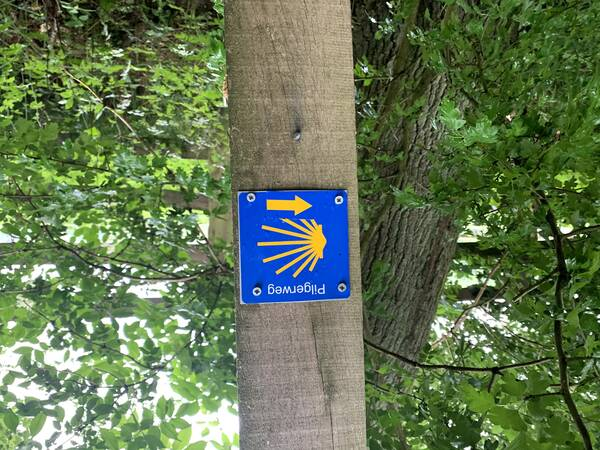 The official signs of the pilgrimage route roam the path here, too
