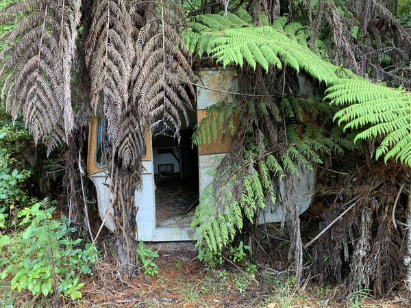 Someone forgot his trailer in the bush. Made me dream about was might have been going on here. Also, remember that Lost episode were Hurley finds a trailer in the jungle? Kind of like that.