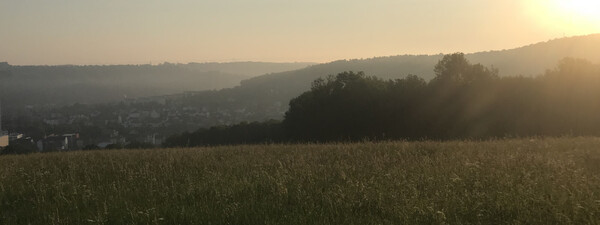 Peaceful Thuringian meadows