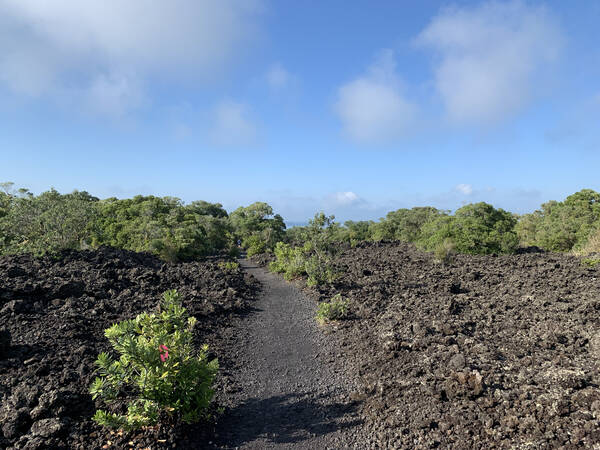 One of the easy volcanic trails