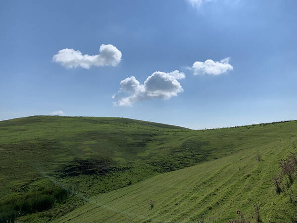 Remember that Windows XP default desktop background?