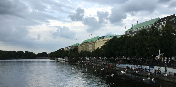 The swans on the Alster are not impressed